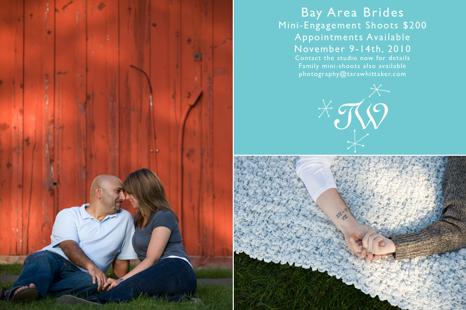 bay_area_brides_promotion