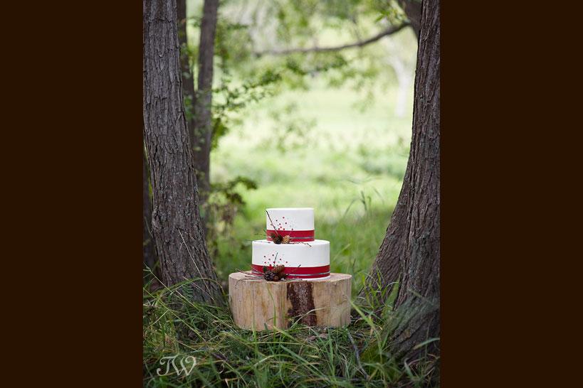 vintage-wedding-cake-Cakeworks-Tara-Whittaker-01