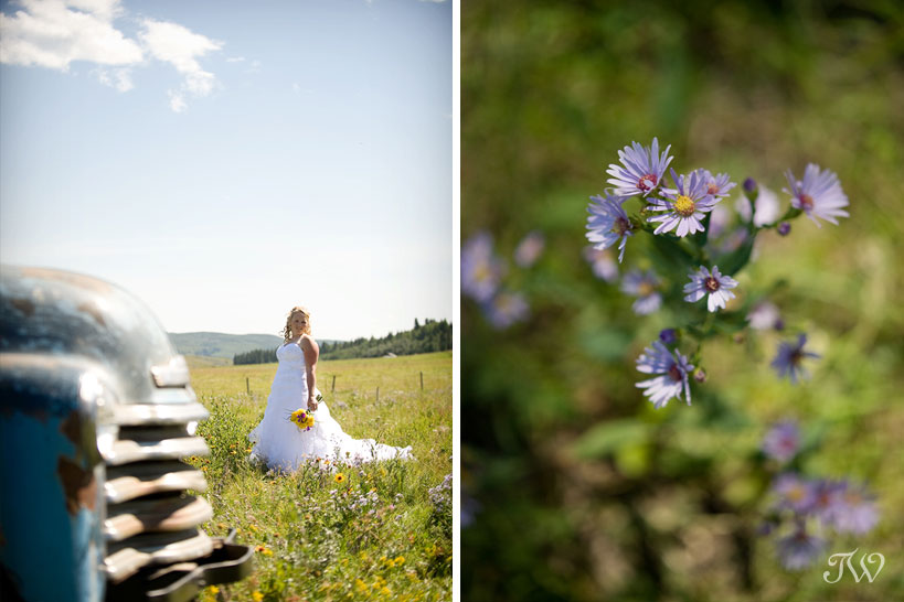 Cochrane-Ranche-House-Wedding-Photos-bridal-portraits