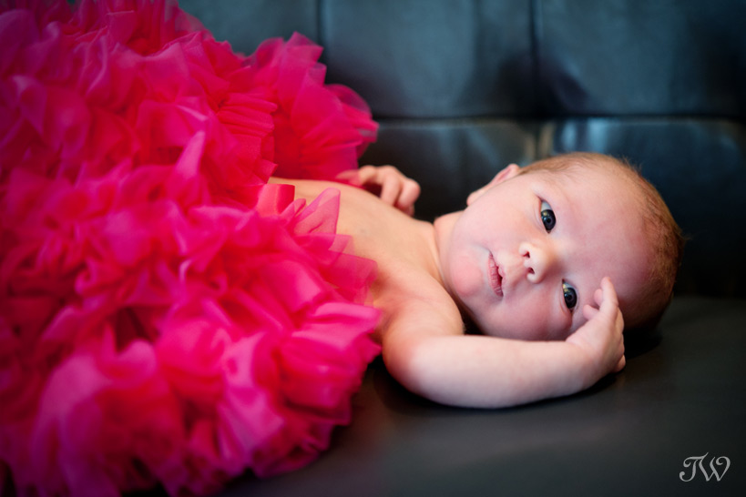 Newborn-photos-Calgary-baby-in-tutu