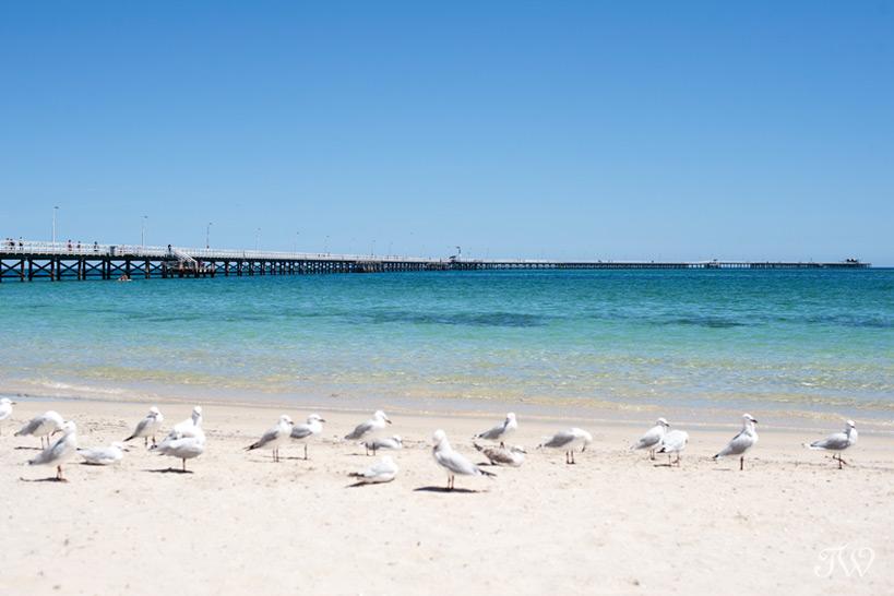 christmas-vacation-australia-19