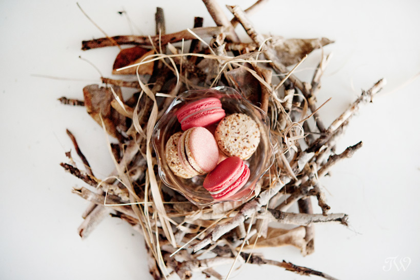Spring nest for macarons created by Calgary wedding photographer Tara Whittaker