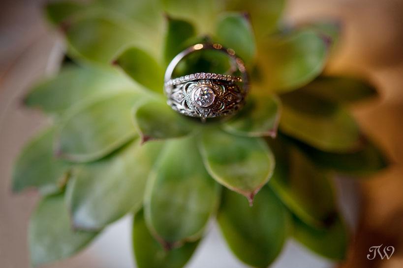 ring shots captured by Calgary wedding photographer Tara Whittaker