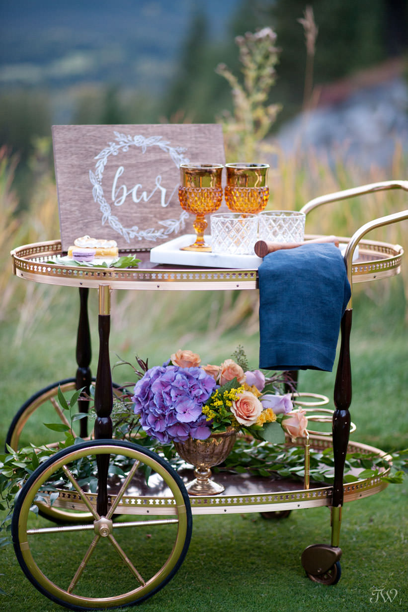 Punches of Ultra Violet, the Pantone color of the year on a bar cart captured by Tara Whittaker Photography
