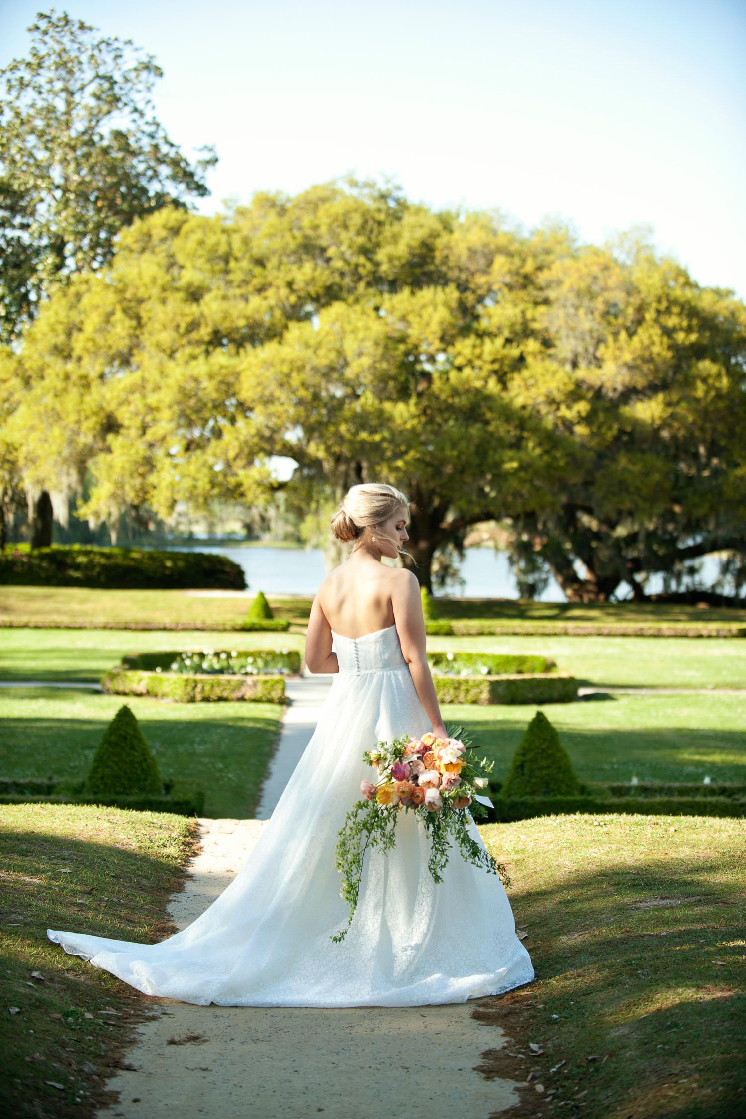 Bride in front of an ancient oak at Middleton Place captured by Tara Whittaker Photography